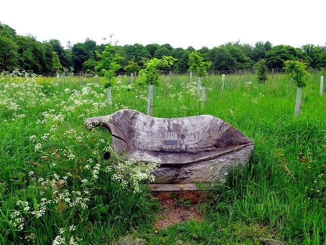 Rustic bench, Wallington