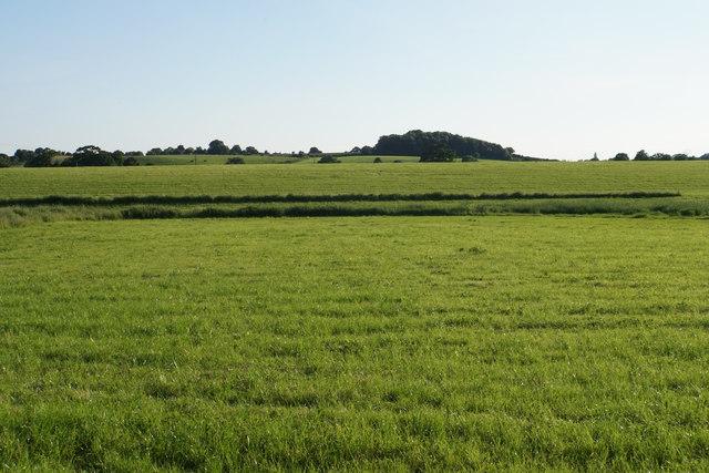 Farmland near Holdfast