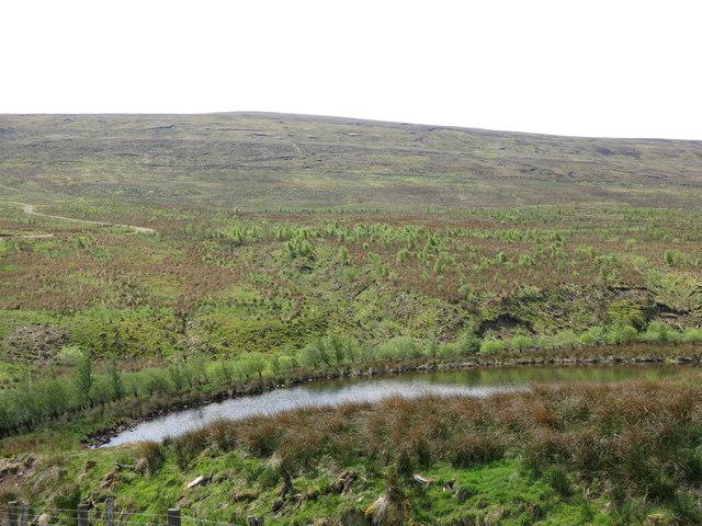 The valley of Wellhope Burn below Highwatch Currick