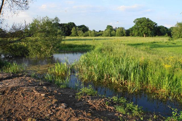 Pond near Buryend Farm