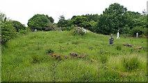 G2624 : Overgrown cemetery by Mick Garratt
