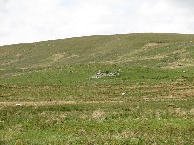 Limekiln Hill (2)