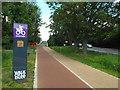 "TQ3586 : Cycling ""Quietway"" near Clapton by Malc McDonald"