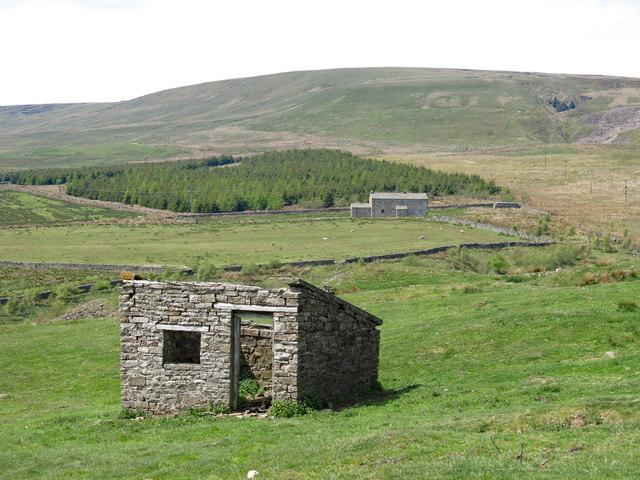Old quarry hut above Killopeburn Bridge