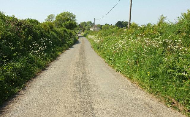 Lane to Wonders Corner