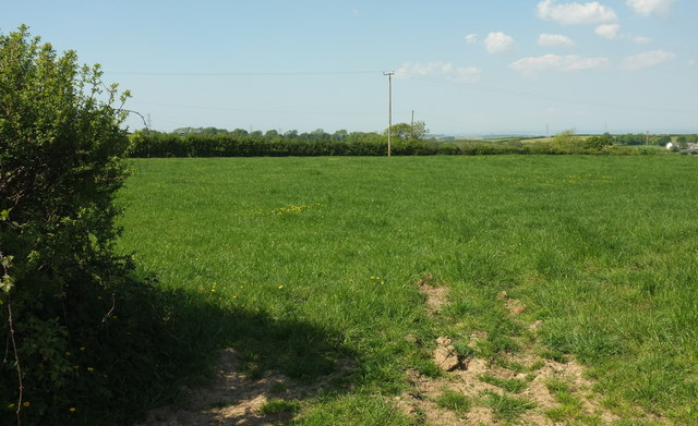 Field at East Stibb Farm