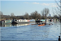 TQ3587 : Rowing on the River Lea by N Chadwick