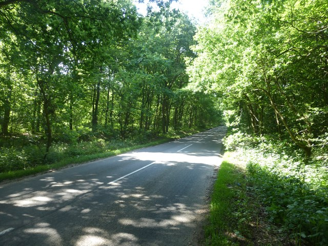 Haywood Oaks Lane