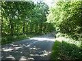 SK6054 : Haywood Oaks Lane by Graham Hogg