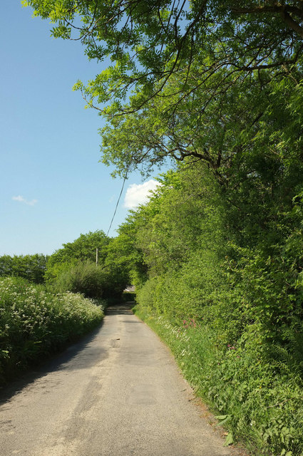 Lane to Thorne Moor