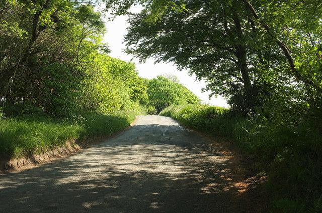Lane to Bulkworthy Moor