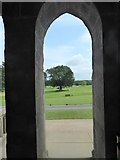 NS4187 : View to the golf course at Ross Priory by Stanley Howe