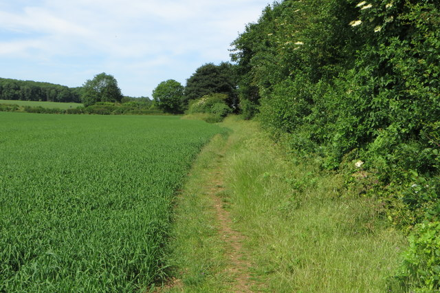 Footpath into Juniper Hill