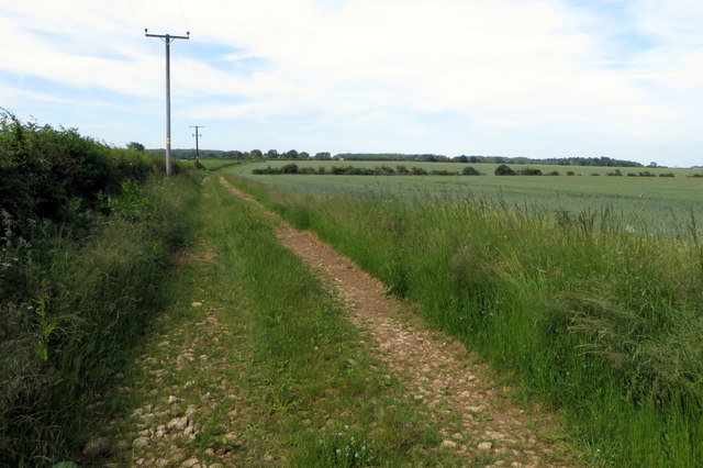 Footpath to Juniper Hill