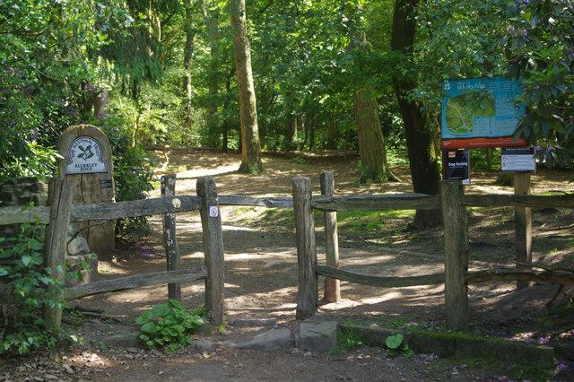 The National Trust - Alderley Edge