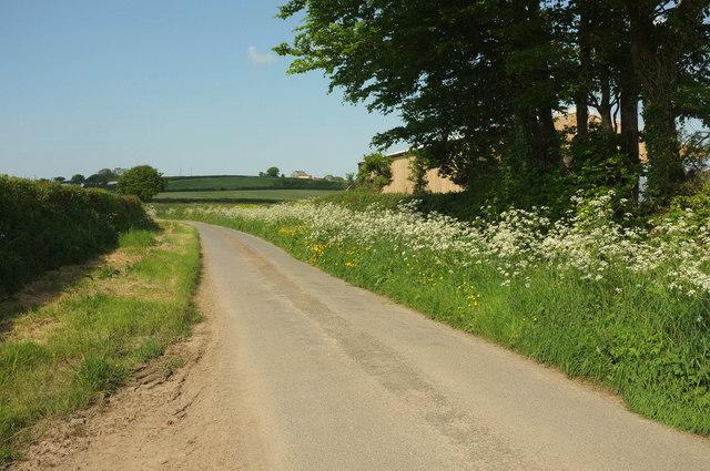 Lane past Ladford