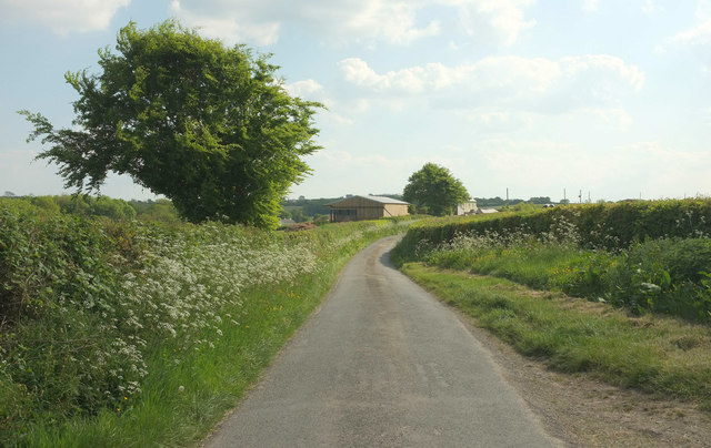 Lane to Little Ladford