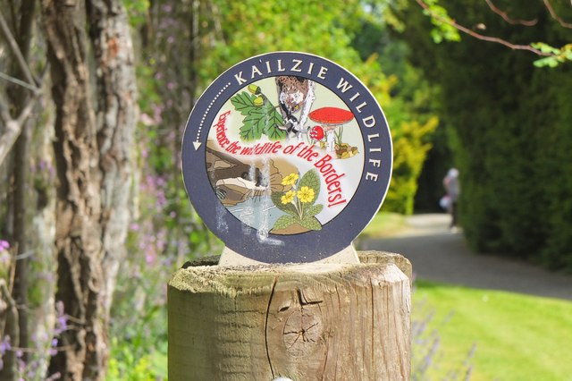 Wildlife waymark, Kailzie