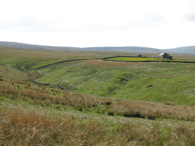 The cleugh of Whin Sike