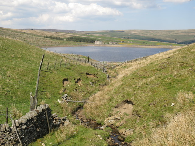 Looking down the cleugh of Whin Sike
