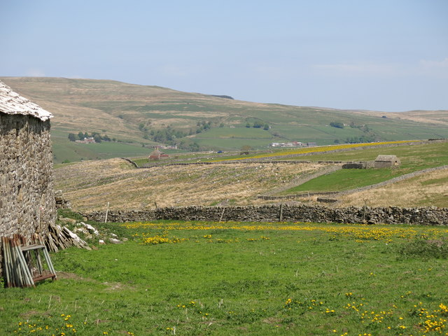 Rough pastures and clear-felled plantation between High House and The Rigg