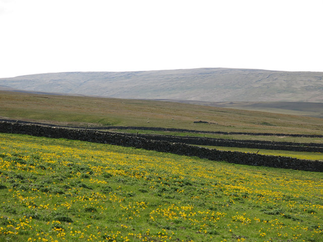 Rough pastures and moorland west of High House