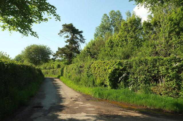 Lane near Manna Park