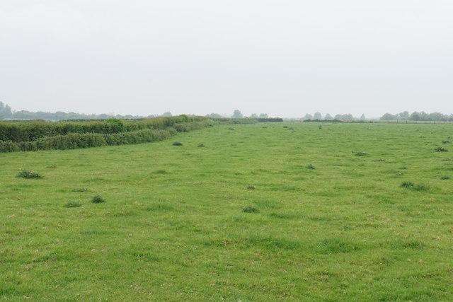 Footpath to Tewkesbury