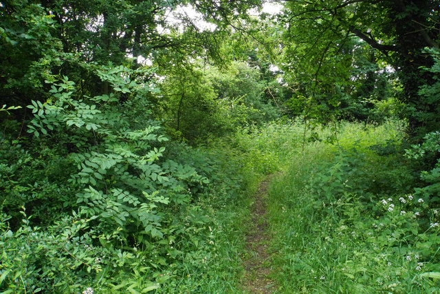 Bridleway near Tredington Park