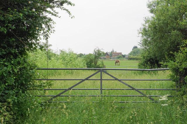Gates near Cursey Farm