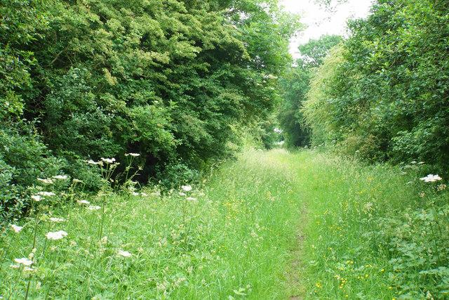 Bridleway to Cursey Lane