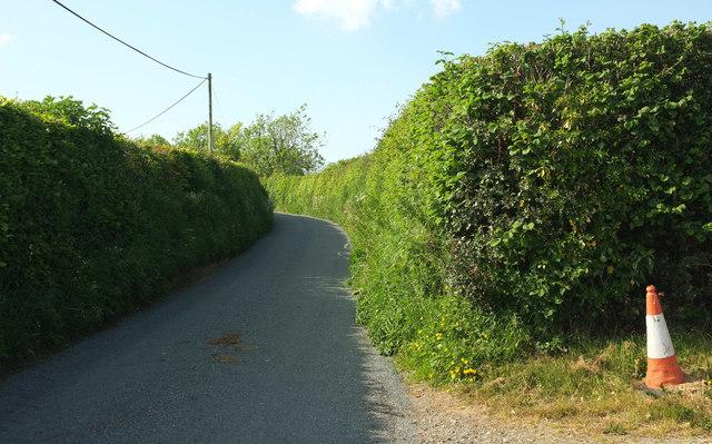 Lane to Ruxhill