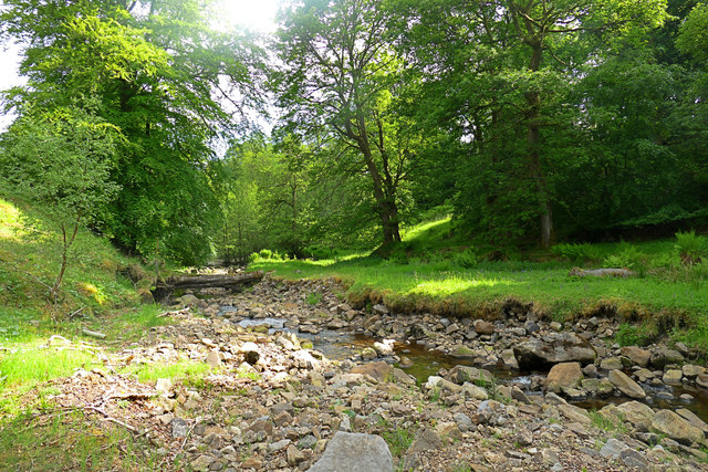Convenient crossing point on Wemmergill Beck