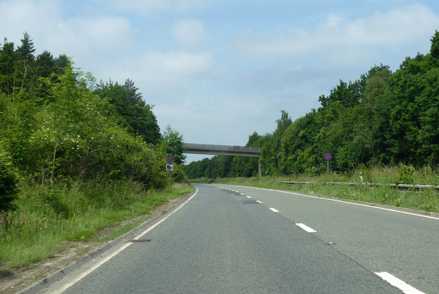 A36 towards Salisbury