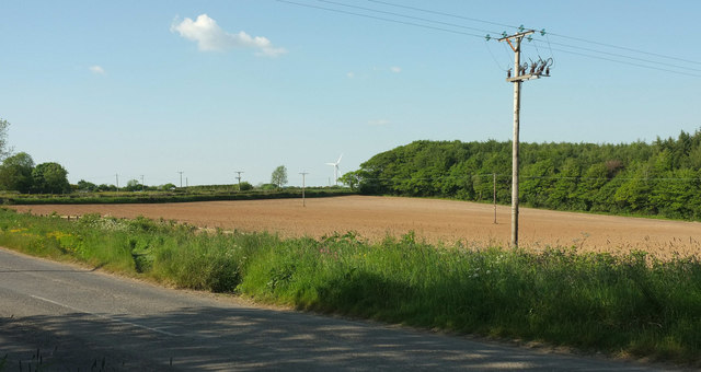 Field by Justment Plantation