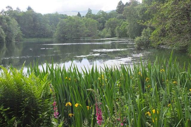The Loch, Hallmanor