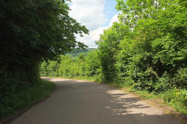 Lane near Peartree junction