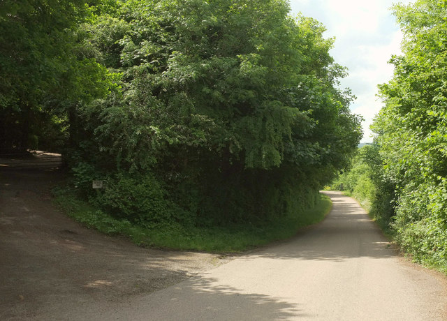 Lane from Peartree junction