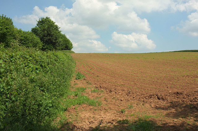 Field by Dolbeare Road