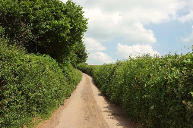 Dolbeare Road