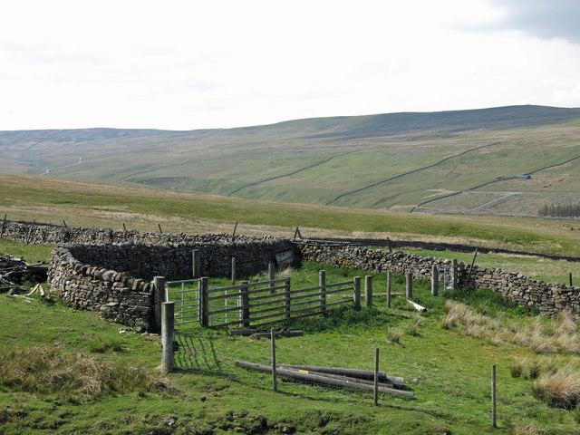Sheepfold west of Far High House