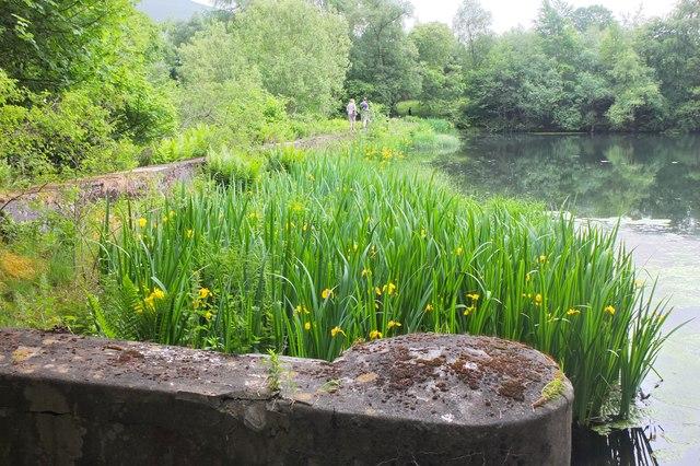 Dam at Hallmanor Loch