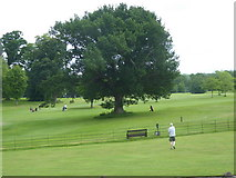 NS4187 : Ross Priory Golf Course by Stanley Howe