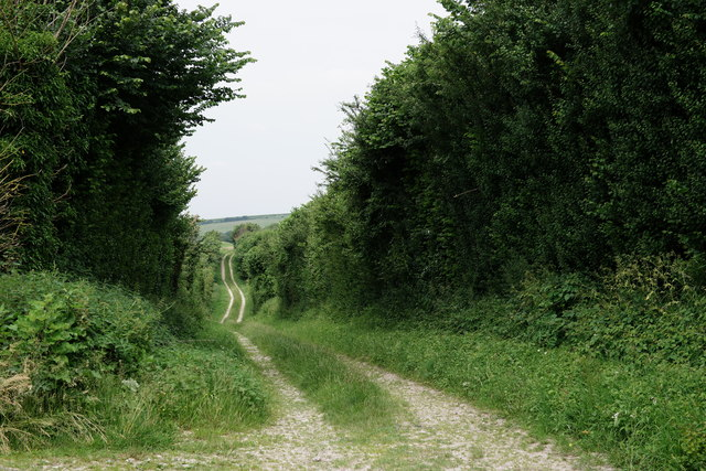 Along the Bridleway