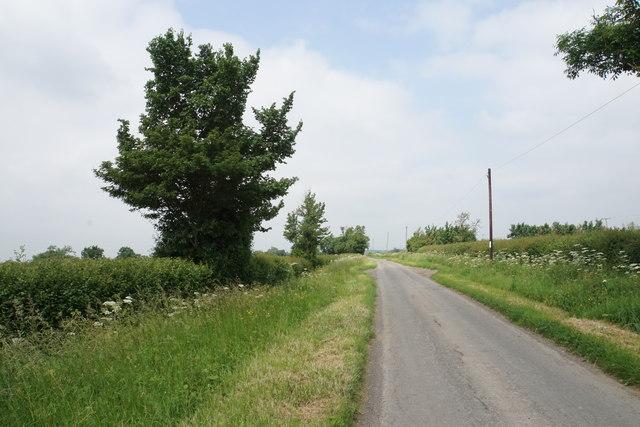 Country lane near Harrow Farm