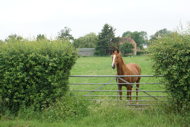 Being watched at Hardwicke