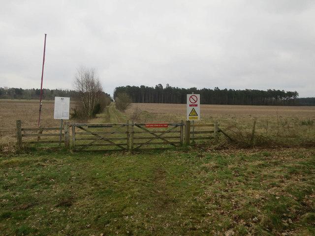 Ickburgh Fields