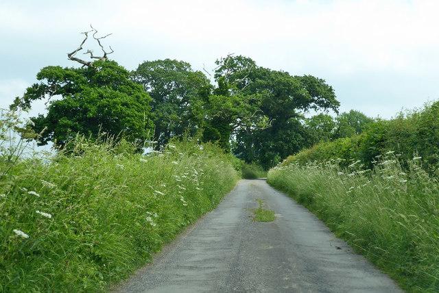 Lane around former Redlynch Park