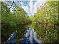 NC8400 : Pond in Cnoc na Croiche by valenta