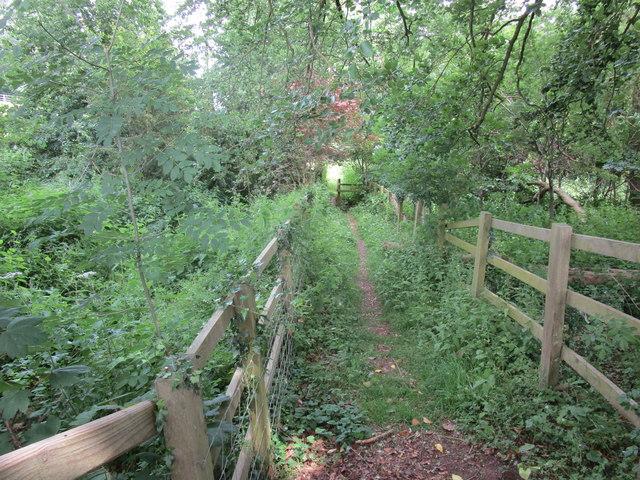 Footpath to Sellack
